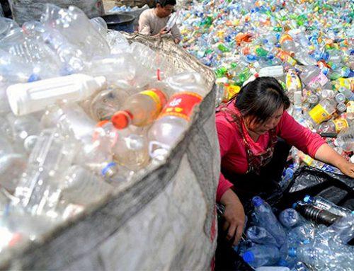 Empresas mexicanas avanzan en el reciclaje de botellas de plástico