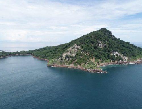 Isla Boná se convierte en una área protegida y refugio para la vida silvestre