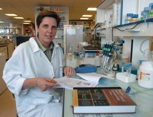 Las terapias genéticas dan un paso gigante en 2019