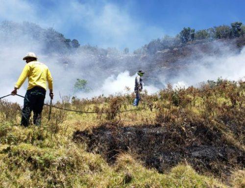 Mi Ambiente y bomberos liquidan IMAVE en tierras altas