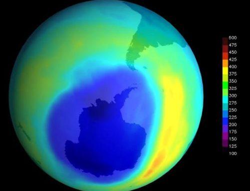 Un enorme agujero en la capa de ozono causó una extinción masiva hace 360 millones de años