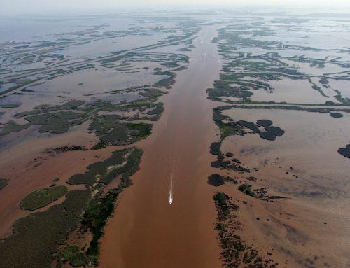 El delta del Mississippi 'colapsado'