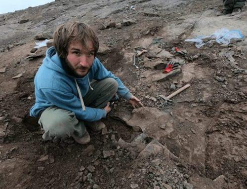 Un dinosaurio de 10 metros y garras de 35 centímetros, excavado en Argentina