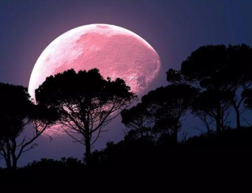 'Luna de Fresa' iluminará el cielo esta semana y dará lugar a eclipse penumbral
