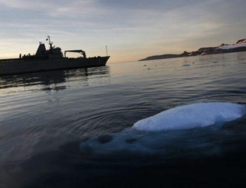 Antártida chilena vive el invierno más caluroso de las últimas tres décadas