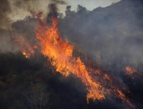 Un incendio al sur de Los Ángeles obliga a evacuar unas 25.000 personas