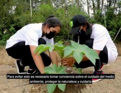 IPTA Monte Lirio obtiene el segundo lugar en certamen mundial de la Red Climática de España