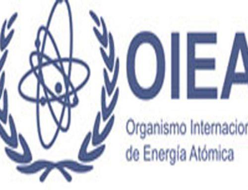 Un argentino y un rumano se disputan la dirección de la OIEA