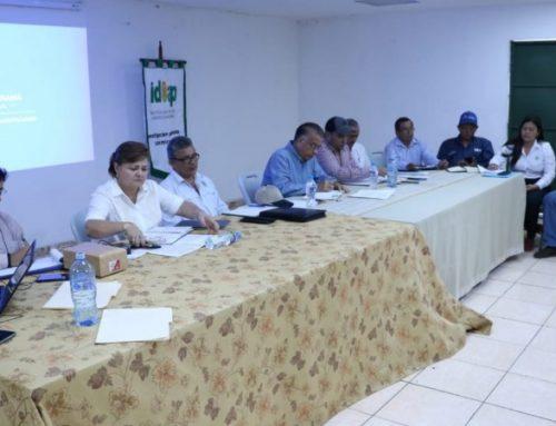 """Gobierno panameño busca establecer programa para recuperar la """"palma aceitera"""""""