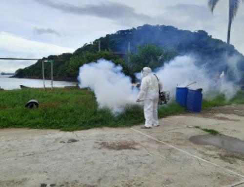 Personal de la Región Metropolitana de Salud, no reporta defunciones por dengue