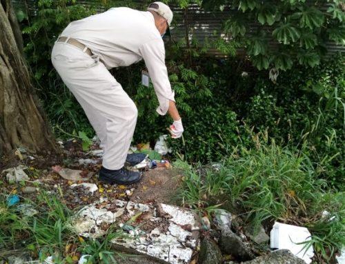 Personal de Salud, realiza operativo de eliminación de ratas, en comunidad de Chivo-Chivo, de Las Cumbres