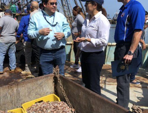 EE.UU. es observador de inspecciones de barcos camaroneros para confirmar uso de dispositivos que protege a tortugas marinas.