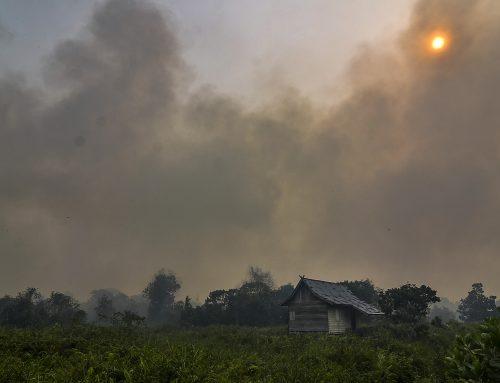 Aeropuertos y escuelas cerrados en Malasia y en Indonesia por humo de incendios