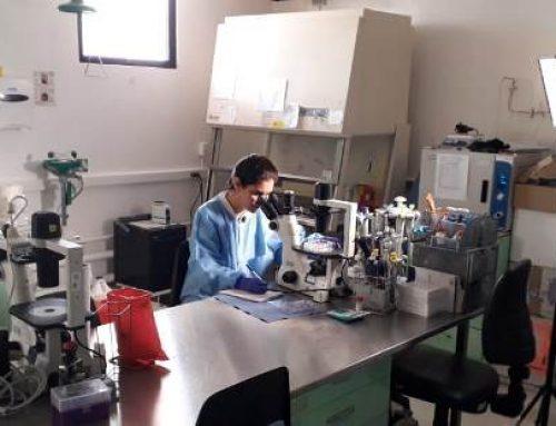 """""""Mentes Curiosas"""" nueva docu-serie de Sertv que destaca la vida de las científicas panameñas"""