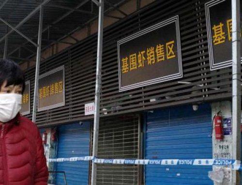 Mantienen vigilancia epidemiológica ante la presencia del coronavirus en la ciudad de Wuhan (China)
