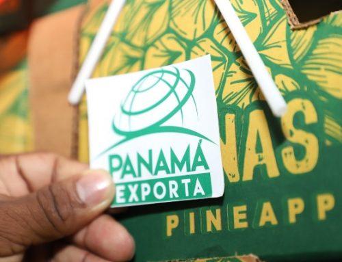 Exportaciones panameñas aumentan 23% en periodo de julio a noviembre de 2019